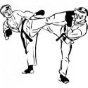 Arts martiaux, sport de combat